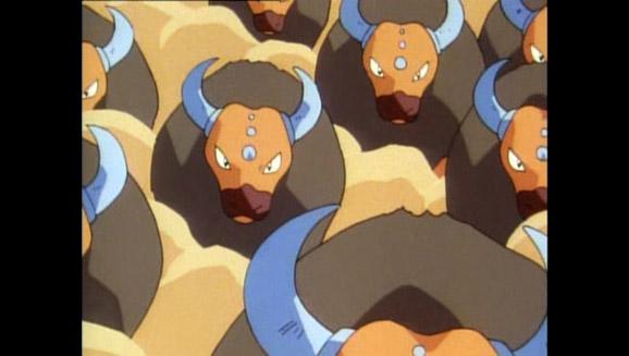 La llama Pokémon-athon