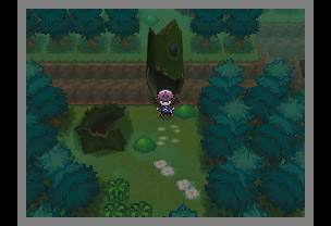 Pok mon schwarze edition und pok mon wei e edition for Boden pokemon