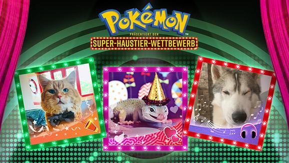 """Bei """"Pokémon präsentiert den Super-Haustier-Wettbewerb"""" ist Spaß garan-tiert"""