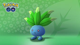 Grün ist schön während der Äquinoktium-Woche in Pokémon GO!
