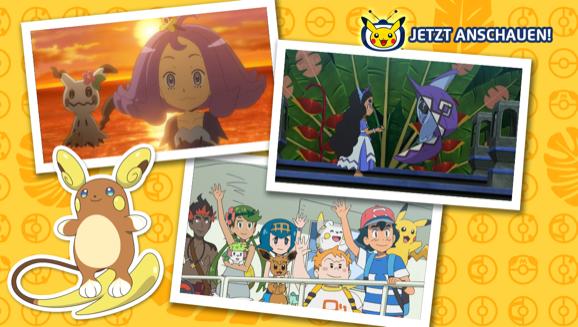 """Sage """"Alola"""" zur Inselwanderschaft auf Pokémon-TV"""