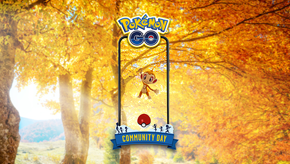 November Community Day Heats Up with Chimchar