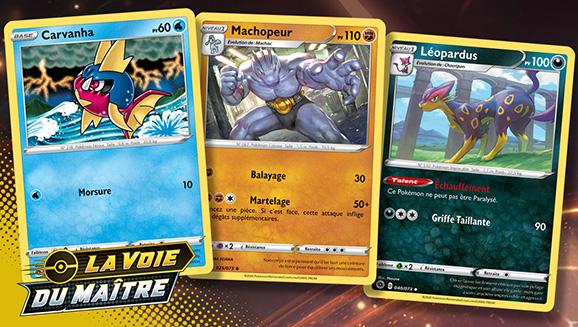 Les illustrations de La Voie du Maître du JCC Pokémon