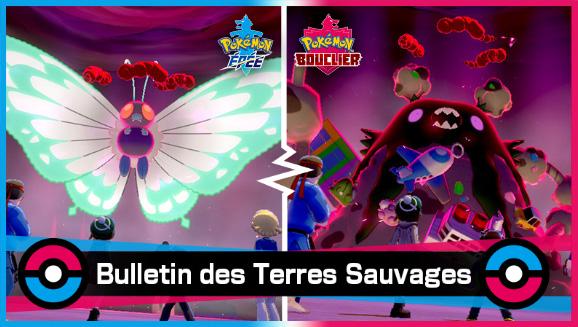 Invasion de Pokémon Insecte et Poison dans les antres de Pokémon !