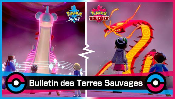 Grâce aux Pokémon de type Feu et de type Glace, le thermomètre promet de faire les montagnes russes lors des raids Dynamax !