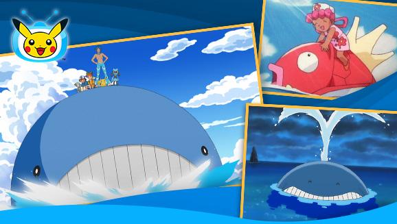 I Pokémon ALLEATI fanno <em>gioco di squadra</em> su TV Pokémon