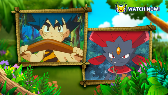 Welcome to the Jungle on Pokémon TV