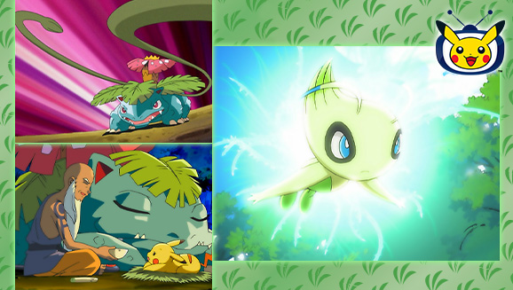 Celebi and Venusaur Team Up on Pokémon TV