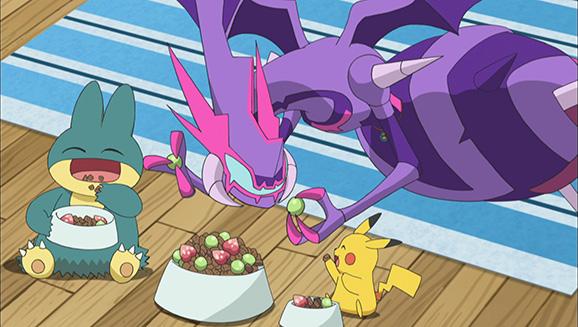 Catch the Latest Episodes on the Upgraded Pokémon TV!