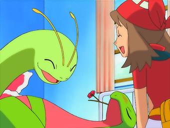Pokemon 9. Sezon 7. Bölüm Türkçe İzle