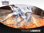 Pokémon TCG: Black & White Reshiram Wallpaper