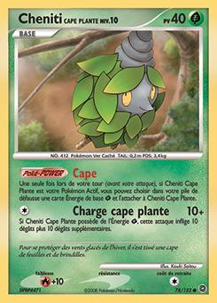 Cheniti Cape Plante