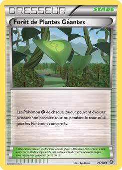 Forêt de Plantes Géantes