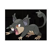 Rattata-Alola(小拉達-Alola)