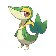 Image result for snivy