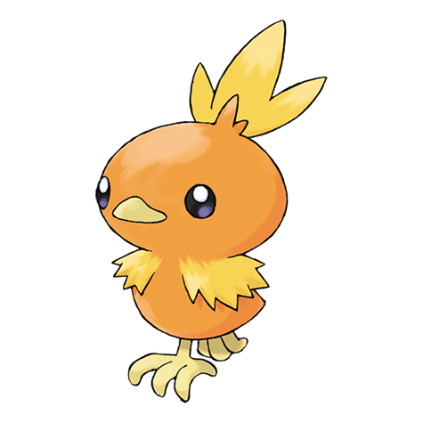 Torchic Pokedex