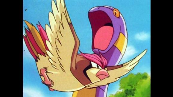 Capture du premier Pokémon