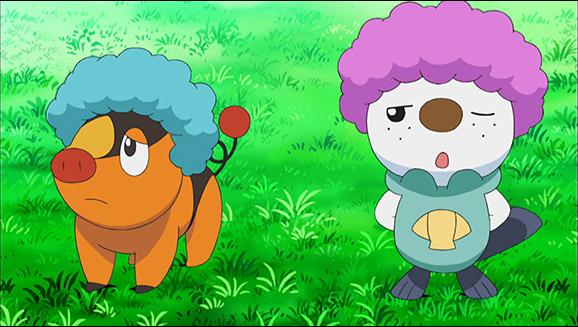 Sur Le Territoire Des Frison Tv Pokémon