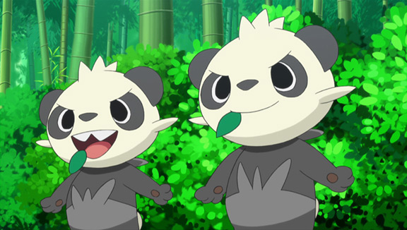 La foresta di Bambù!